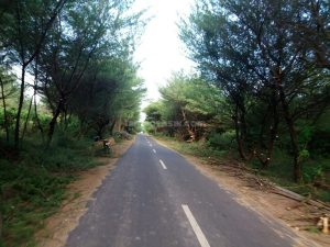rute menuju gumuk pasir Parangkusumo
